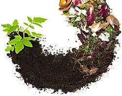 Compost--It's Easy to Do.  Register now!