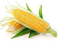 07-corn