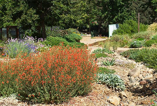 Master Gardeners Will Be In The Garden On Saturday, September 9th, For Our  Open Garden Event From 9am To Noon To Answer Questions And Provide Tips On  ...