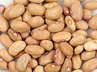 'Bolita' bean