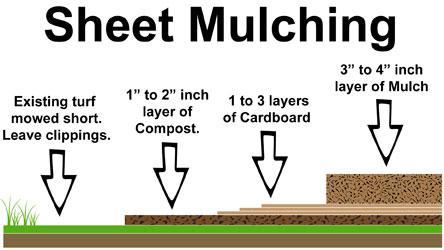 1-Sheet-Mulching2