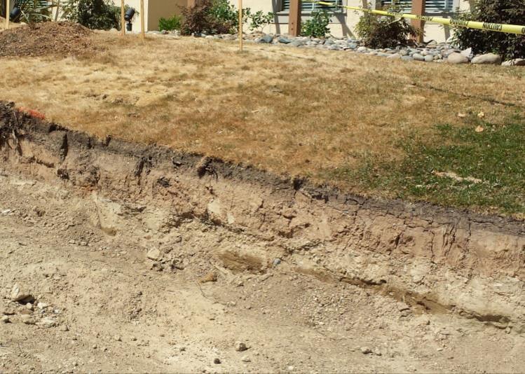 Ultra Wel Soil Preparation - Sacramento Mgs