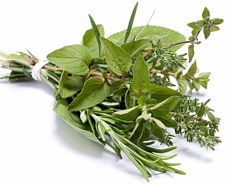Grow herbs!