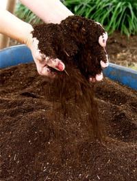 Soil amendment<br>(click to enlarge)