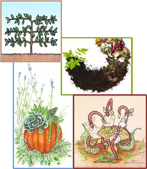 Previous Events include: Gifts from the Garden, Basics of Backyard Composting, and Do Worms have Teeth? Worm Composting and Learn to Espalier.